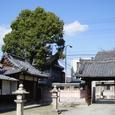 街中の薬園八幡神社